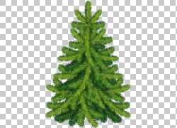 圣诞树冷杉剪贴画图片