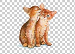 互相舔着可爱猫png素材