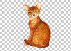 绘画黄色猫咪
