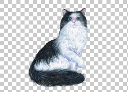 黑白手绘猫咪png