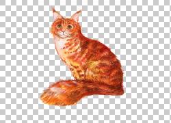 橙色手绘猫咪png