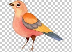 手绘水彩鸟png素材