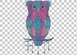 彩色手绘猫头鹰png素材