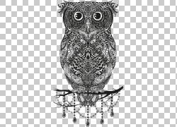 猫头鹰动物花纹png素材