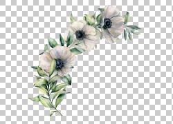 绿叶和鲜花免扣素材