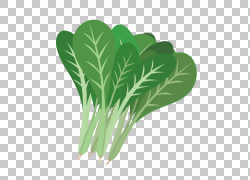 Komatsuna叶菜季节性食物,芥末PNG剪贴画电视,叶蔬菜,食品,叶,日图片