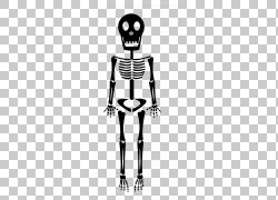 人体骨骼骨,黑色骨骼PNG剪贴画节日元素,单色,人类,头,虚构人物,图片