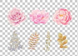 粉红色的花朵粉红色的花朵水彩画,手,粉红色的水彩花,粉红色的玫