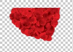 花园玫瑰海滩玫瑰红色花瓣,玫瑰PNG剪贴画爱,蓝色,心,花束,鲜花,