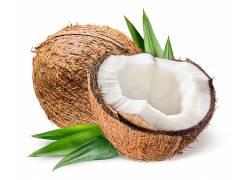 椰子果壳高清摄影图片