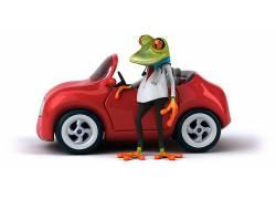 商务职业蜥蜴先生高清图片