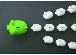 绿色小猪白色小猪储钱罐图片