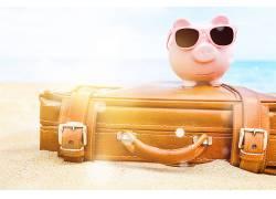 粉色戴墨镜小猪存钱罐图片