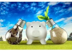 自然背景白色小猪储钱罐图片