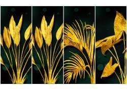 金色植物插画