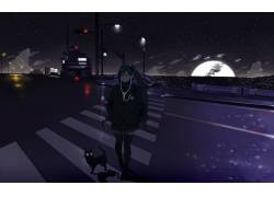 动漫,初音未来,晚,猫,动漫女孩,动漫70642图片