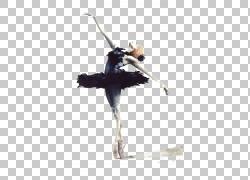 芭蕾舞者天鹅湖Cygnini绘图,芭蕾PNG剪贴画水彩画,女孩,芭蕾舞鞋,图片