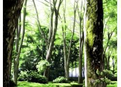 动漫,动漫,景观,森林,阳光34397图片