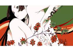 动漫,动漫,气动齿轮,动漫女孩,花卉,黥,胸部40372图片