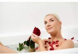 玫瑰与写真美女