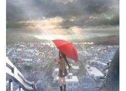 动漫,动漫女孩,雨伞,市,单独32346图片
