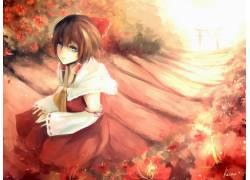 动漫,东方,Hakurei Reimu,动漫女孩,动漫86041图片
