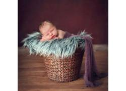 箩筐里的宝宝