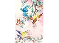 花鸟创意插画图片