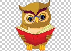 猫头鹰书股票摄影,猫头鹰将读PNG剪贴画动物,摄影,阅读,脊椎动物,图片