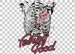 器官人体骨骼关节,骨架PNG剪贴画文本,虚构人物,动物,人体,骨架,图片