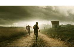 DayZ,景观,僵尸,鸟类,草,云,赛跑,枪,视频游戏65096图片