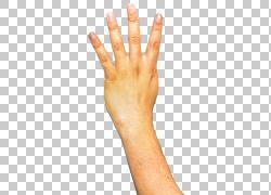 手,胳膊透明背景PNG剪贴画image文件格式,人物,手模型,手语,像素,