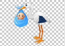 摄影Ciconia例证,动画片逗人喜爱的婴孩被绘的鹳Diao PNG clipart图片