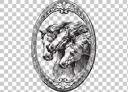 野马小马野马,插图PNG剪贴画马,哺乳动物,食肉动物,摄影,脊椎动物图片