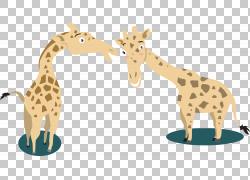 长颈鹿卡通,长颈鹿卡通PNG剪贴画卡通人物,哺乳动物,动物,卡通武图片