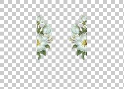 纯净和鲜花PNG剪贴画插花,白色,彩绘,婚礼,海报,花卉,封装PostScr图片