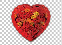 母亲节女儿,玫瑰平行爱3 PNG剪贴画爱,插花,用户界面设计,心,海报图片