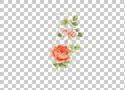 花瓶玫瑰瓶,瓶世界PNG剪贴画玻璃,插花,人造花,花卉,材料,绘画,相图片