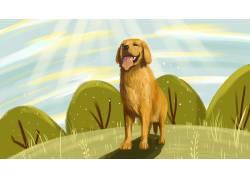 草地上的黄狗卡通插画