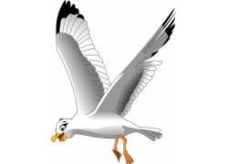 飞翔的鹅图片
