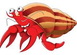 手绘卡通红色寄居蟹AI文件图片
