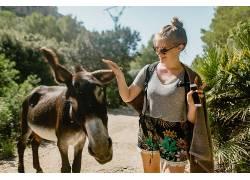 美丽女人道路上与驴树图片摄影