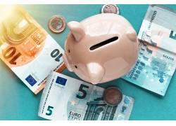 金融货币小猪储钱罐图片