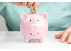 粉色小猪存钱罐图片