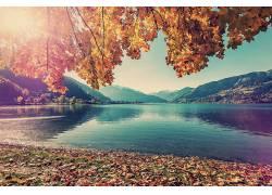 森林湖泊美景图片