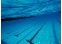 游泳池运动健身场馆